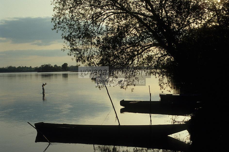 Europe/France/Pays de la Loire/Maine-et-Loire/Env d'Angers : Bords de la Loire