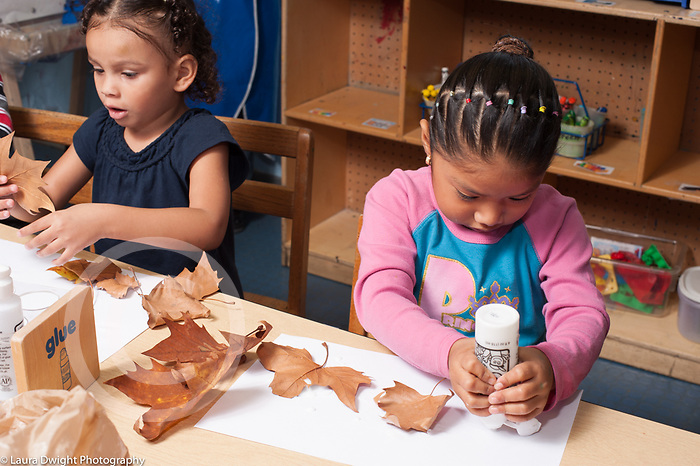 Education preschool 3-4 year olds art activity two girls gluing fall leaves on paper
