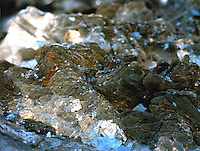 MICA<br />