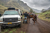 USA, Oregon, Joseph, Cowboy Cody Ross unsaddles his horse after moving cattle in the rain up Big Sheep Creek, Northeast Oregon