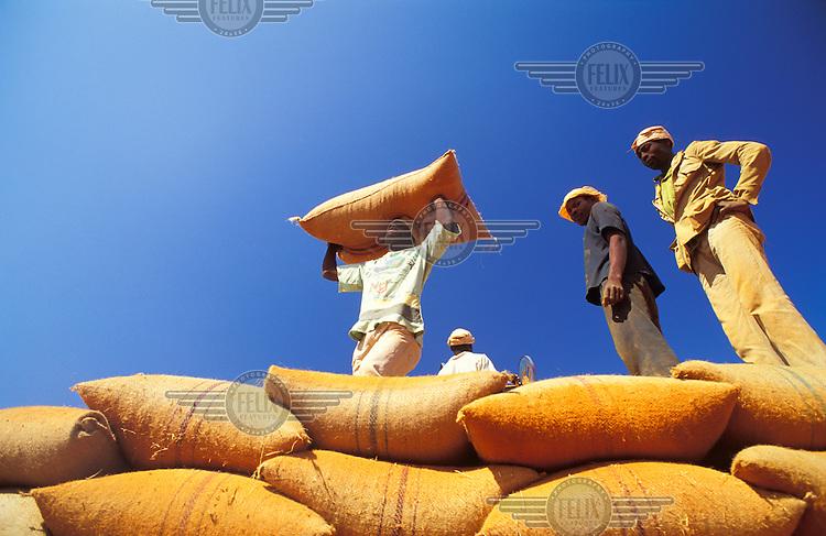 Loading sacks of grain.