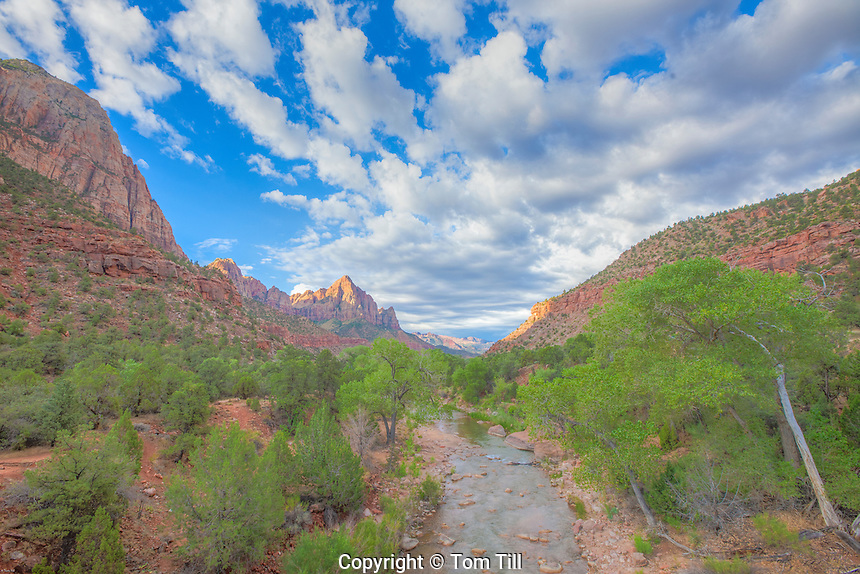 Morning clouds over the Watchaman and Virgin River, Zion National Park, Utah