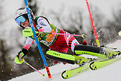 2nd February 2019, Maribor, Slovenia;  Katharina Truppe of Austria in action during the Audi FIS Alpine Ski World Cup Women's Slalom Golden Fox on February 2, 2019 in Maribor, Slovenia