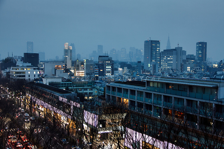 Tokyo, February 2012 - View over Omotesando avenue and Omotesando Hills, with Shinjuku skycrapers in the background.