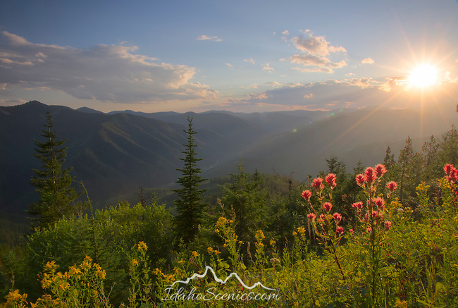 Idaho, North, Wallace, Moon Pass. Summer sunset over the mountains of the St. Joe National Forest.