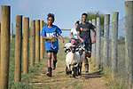 Eldana Teclamariam (left), a 12-year old resettled refugee from Eritrea, leads a group of youth learning how to show sheep and goats in Linville, Virginia, on July 17, 2017. The youth are preparing to show their animals in a county fair. <br /> <br /> They and other refugees were resettled in the Harrisonburg, Virginia, area by Church World Service. <br /> <br /> Photo by Paul Jeffrey for Church World Service.