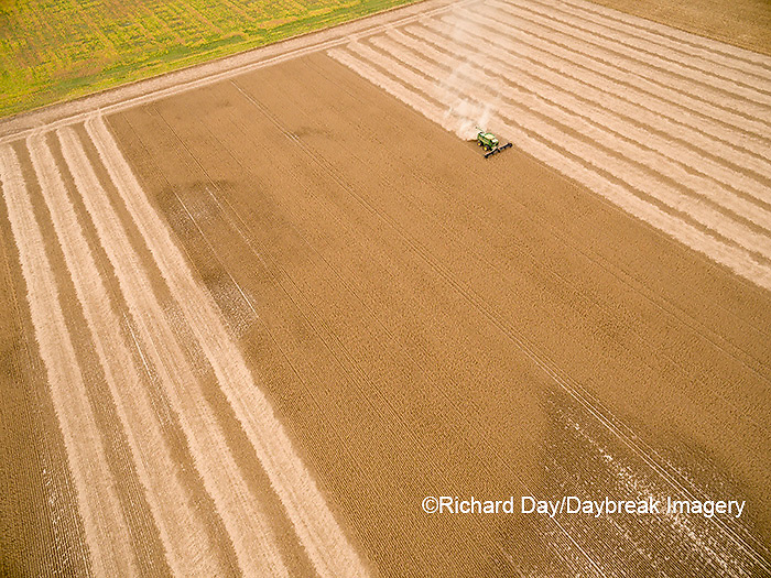 63801-09505 Soybean Harvest, John Deere combine harvesting soybeans - aerial - Marion Co. IL