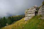 Karst rocks near timberline, Alps, Italy