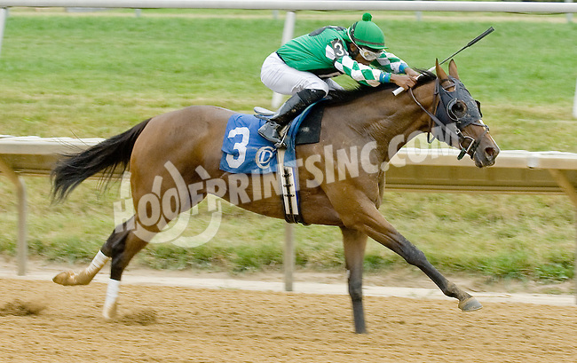 Bwana Jon winning at Delaware Park on 7/21/12