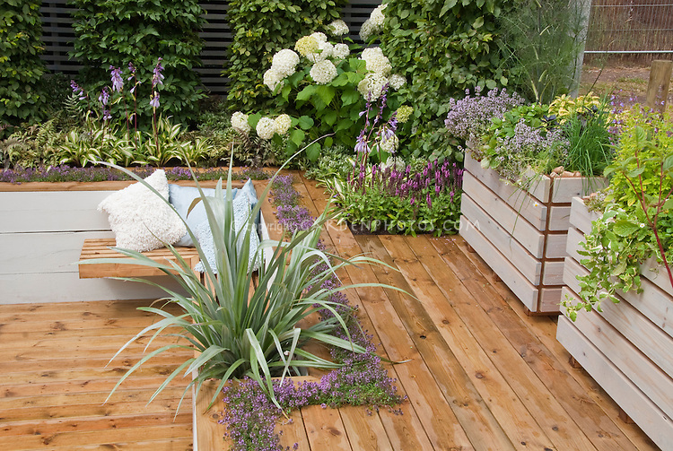 Sunken deck landscaping with raised beds, hydrangea shrubs, flowers, spiky plants, garden bench, Hostas in bloom, thymes herbs in crevices, pillows, wall, for overal pretty and colorful outdoor room