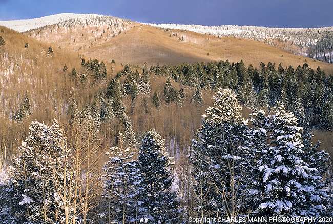 The Sangre de Cristo mountians above Santa Fe take on a dramatic aura during a winter snow.