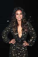 SANTA MONICA, CA - JANUARY 6: Emmanuelle Chriqui inside at Art of Elysium's 11th Annual Heaven Celebration at Barker Hangar in Santa Monica, California on January 6, 2018. Credit: mpi809/MediaPunch