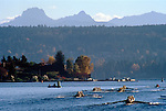 Rowing regatta, Seattle, Eight oared racing shells compete across Lake Washington, with the Cascade Mountains in the distance.The Head of the Lake Regatta,.