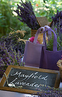 Detail of a table with freshly cut lavender in hessian bags