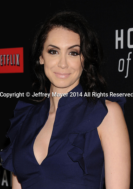 LOS ANGELES, CA- FEBRUARY 13: Actress Mozhan Marnò arrives at the 'House Of Cards' Season 2 special screening at Directors Guild Of America on February 13, 2014 in Los Angeles, California.