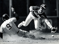 A's Tony Phillips dives for throw. (1983 photo by Ron Riesterer)