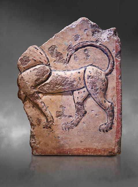 Phrygian relief plaque fragment depicting a lion . 8th-7th century BC . Çorum Archaeological Museum, Corum, Turkey