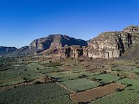 Nopal plantations in the valley of Tlayacapan. San Jose de los Laureles,  Tlayacapan, Morelos, Mexico.