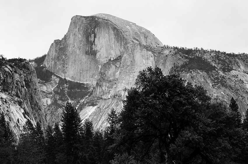 Half Dome from Cook's Meadow, Yosemite ,  35mm image on Ilford Delta 100 film