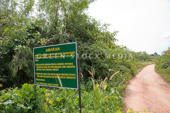 Forested watershed area with a protection sign in Malay that loosely translates to 1. No hunting, no farming, no cutting trees, no mining. 2. No littering or any activity that will destroy this area. The Sindora Palm Oil Plantation, owned by Kulim, is green certified by the Roundtable on Sustainable Palm Oil (RSPO) for its environmental, economic, and socially sustainable practices. Johor Bahru, Malaysia