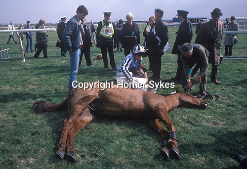 Dead race horse at the Grand National course, Aintree. Had to be shot because of a bad fall.1986  UK. Grand National Horse race Aintree Lancashire England annually March.