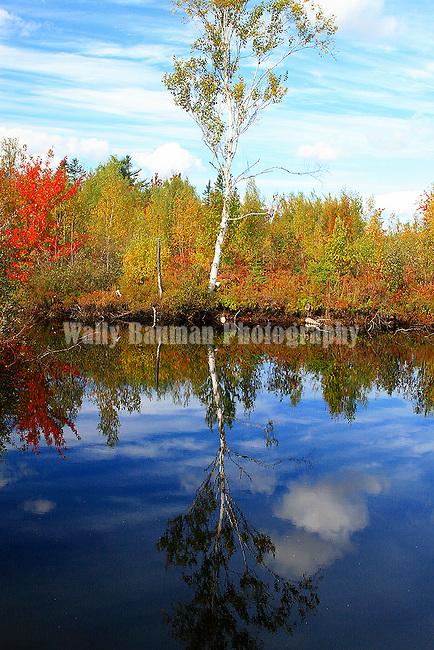 Images of The Canadian Maritime Provinces of Nova Scotia and Prince Edward Island. Autumn Splendor.