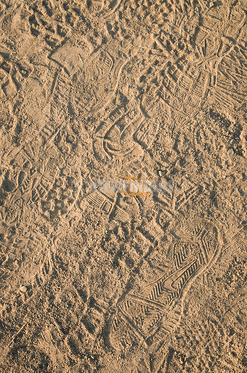 Patterns of shoeprints in a sandy path.
