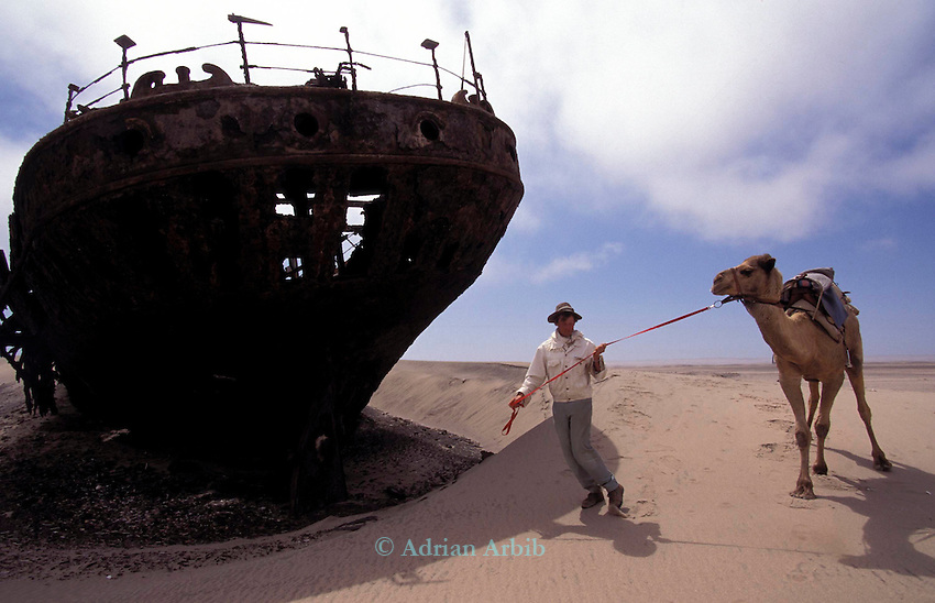Benedict Allen  and camels passing the Edward Bolen shipwreck on the Skeleton Coast. Namibia.