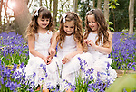Bluebell Mini Shoots - Stunning Triplets Mia, Sophia and Bella