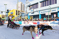 Victoria Hardwick and team leave the ceremonial start line with an Iditarider at 4th Avenue and D street in downtown Anchorage, Alaska on Saturday March 2nd during the 2019 Iditarod race. Photo by Brendan Smith/SchultzPhoto.com