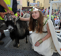 10-8-2014:  Rebecca Coffey crowns King Puck, a wild mountain goat at the coronation ceremony at the annual Puck Fair in Killorglin, County Kerry on Sunday evening.<br /> Picture by Don MacMonagle
