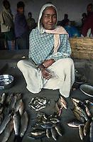 INDIEN, Frau auf Fischmarkt in Westbengalen / INDIA West Bengal , woman at fish market