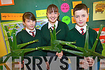Pupils at Firies National School who sold traditional St Brigid's crosses to help raise funds. .L-R Sixth class pupils Coralee Griffin, Ava Coffey and Jack Doody.