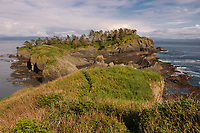 The southern half of Alaska's St. Lazaria Island. This small island hosts more than half a million nesting storm-petrels each summer. Alaska. June.