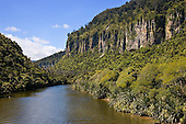 Pororari river, Buller district, West Coast, South Island, New Zealand.