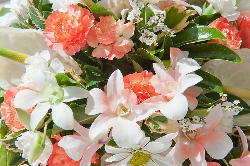 Quinn wedding, 31/03/2012