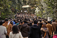 People praying during hatsumode (the first visit to a shrine of the year), Meiji Jingu, Tokyo, Japan, January 3, 2012.