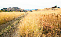 Methow Valley, Washington