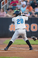Rafelin Lorenzo (28) of the Hudson Valley Renegades at bat against the Aberdeen IronBirds at Leidos Field at Ripken Stadium on July 27, 2017 in Aberdeen, Maryland.  The IronBirds defeated the Renegades 3-0 in game two of a double-header.  (Brian Westerholt/Four Seam Images)