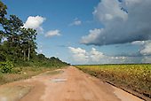 Mato Grosso, Brazil. Fazenda Tanguro Governor Blairo Maggi's soya farm where forest stood only a few years ago. Agriculture maize and rubber. Dirt road through soya bordering on to forests.