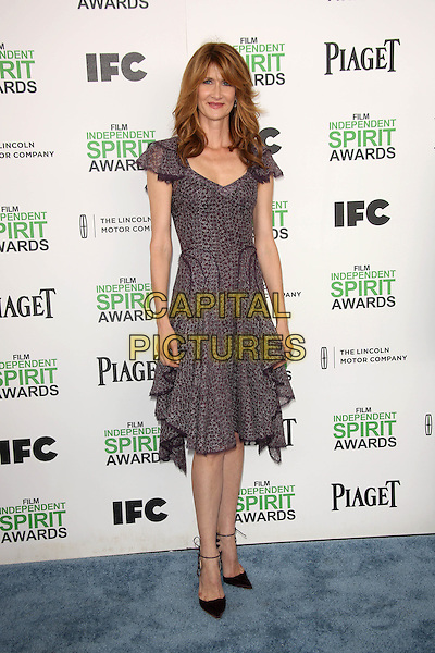 SANTA MONICA, CA - March 01: Laura Dern at the 2014 Film Independent Spirit Awards Arrivals, Santa Monica Beach, Santa Monica,  March 01, 2014. Credit: Janice Ogata/MediaPunch<br /> CAP/MPI/JO<br /> &copy;JO/MPI/Capital Pictures