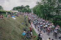 peloton<br /> <br /> stage 13 Ferrara - Nervesa della Battaglia (180km)<br /> 101th Giro d'Italia 2018