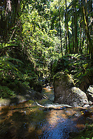 A dappled stream and rocks at the Hawaii Tropical Botanical Garden, Papa'ikou, Big Island of Hawai'i.