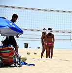 Ocean Park Summer