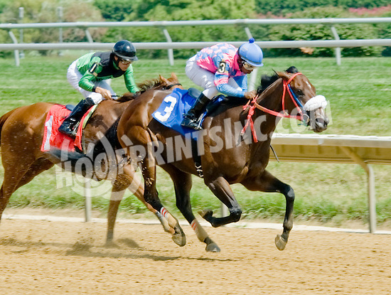 Harbor Fox winning at Delware Park on 7/30/12