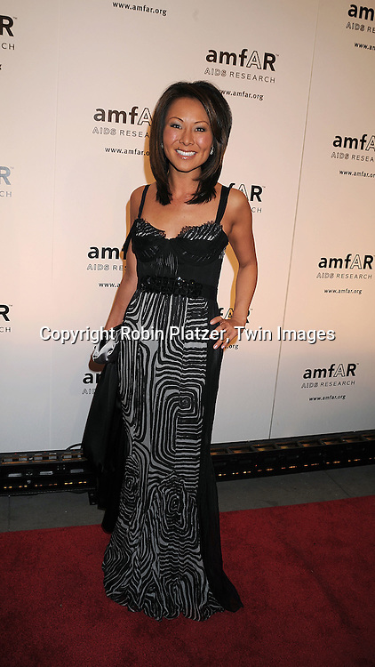 Alina Cho in J Mendel dress.posing for photographers at The amFAR New York Gala honoring Julian Schnabel, Carine Roitfeld and Bobby Shriver on January 31, 2008 at Cipriani 42nd Street. ..Robin Platzer, Twin Images..212-935-0770
