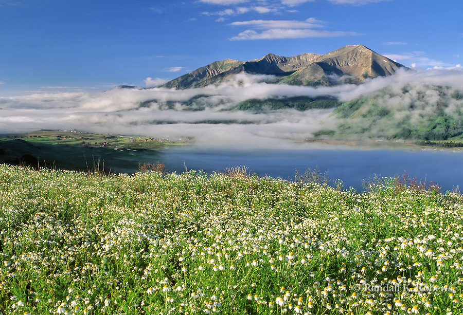 Low clouds and flowers over Whetstone Mountain and Crested Butte, Colorado