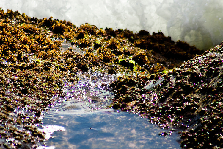 Piscina natural formada entre as pedras pelas ondas do mar.