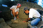 Peopling the Americas, Dave Meltzer, Excavates, Bison, Folsom site, Folsom, New Mexico