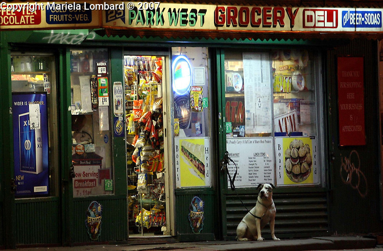 ROP:.Doggie waits for its owner outside of Park West Grocery Deli on Manhattan Ave. and West 100th. St. in the Upper Westside, Manhattan on Oct. 1, 2007.
